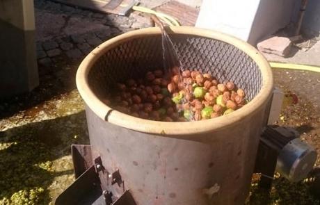 huile-de-noix-nettoyage-gloeckler-brenner
