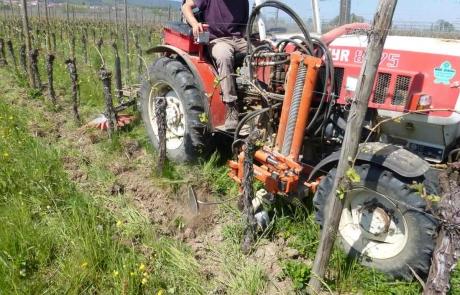 travail-des-vignes-tracteur-vignoble-alsace-glockler-brenner