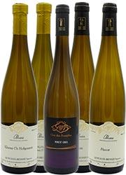 vins-blancs-maison-gloeckler-brenner-vigneron-alsace