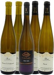 vins-blancs-maison-gloeckler-brenner-vigneron-alsace1